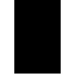 531a2102e54411de12001aaf_icon-black-phone.png
